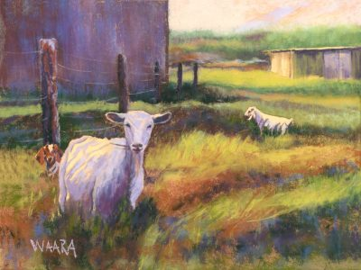 Say Cheese pastel of goats in a field