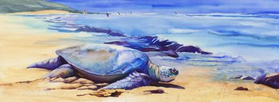 Ho'okipa Honu watercolor of Hawaiian sea turtle
