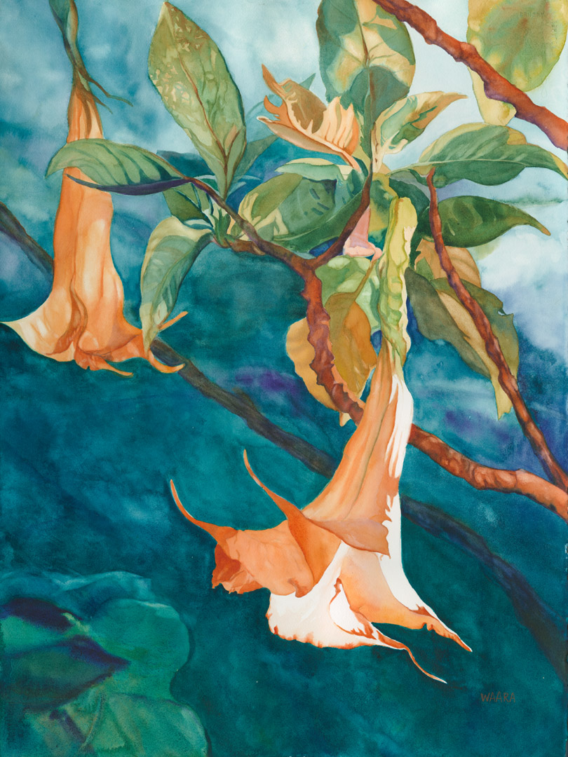 """Silent Trumpets"" Watercolor Painting of trumpet flowers"
