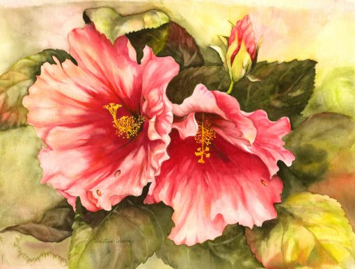 Hibiscus watercolor painting