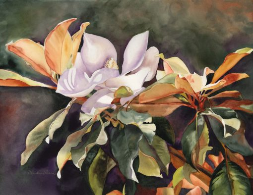 """Late Bloomer"" watercolor of magnolias"