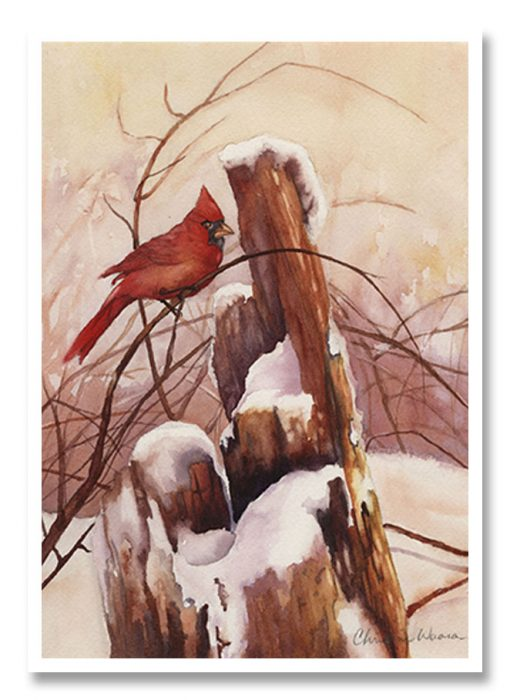 Lookout Perch cardinal Greeting Card
