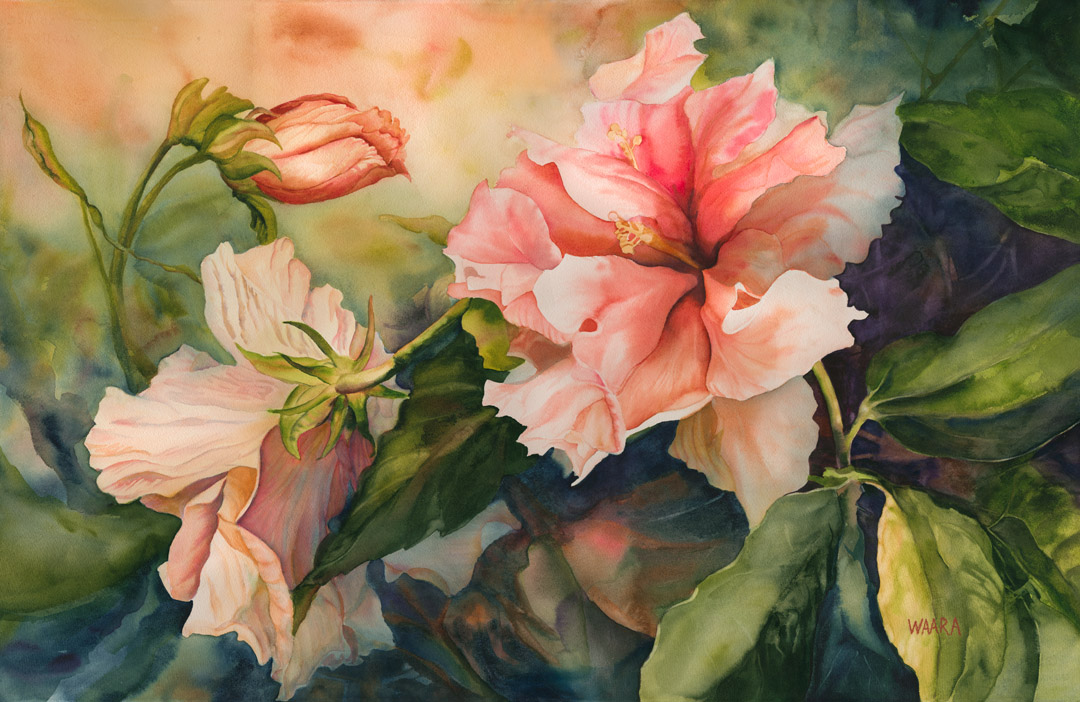 Kona Double Hibiscus original fine art watercolor