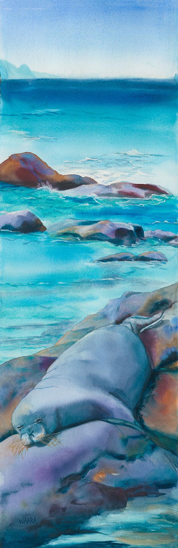 'Ilioholoikauaua watercolor painting of monk seal