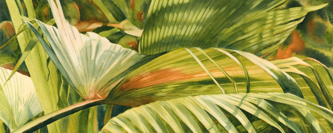 Watercolor painting of loulu palm at The Merwin Conservancy on Maui Hawaii