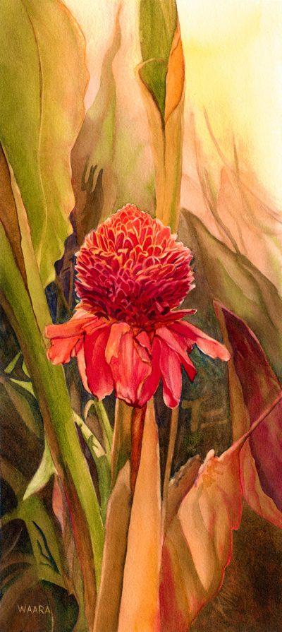 Torch Ginger original watercolor painting by artist Christine Waara