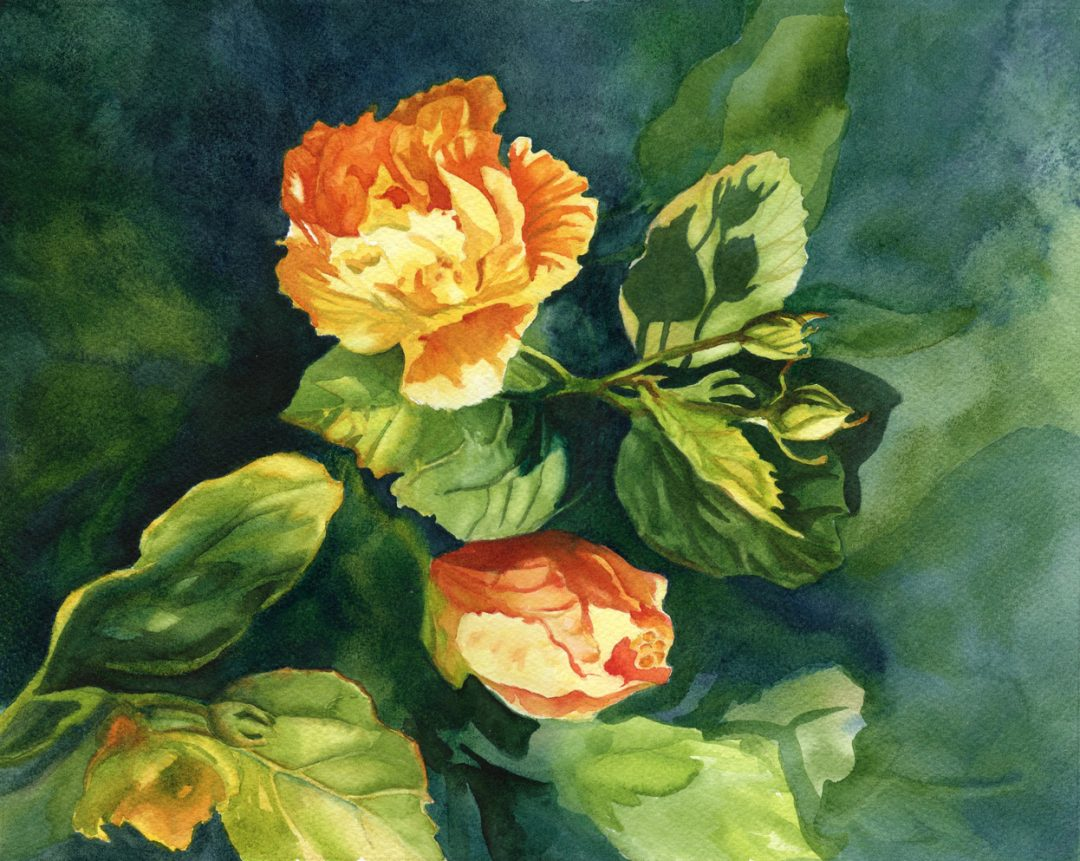 "Original watercolor painting ""First Light"" by Maui artist Christine Waara"