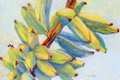Haiku Apple Bananas original pastel painting by Maui artist Christine Waara