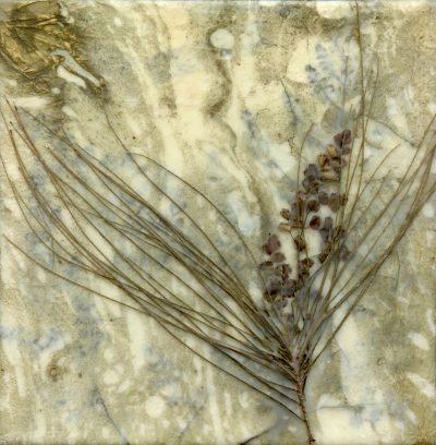 Deep in the Forest original encaustic painting by Maui artist Christine Waara