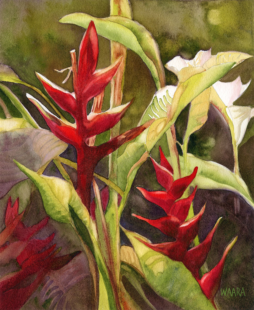 """Lobster Claw Heliconia"" original watercolor painting by Maui artist Christine Waara"
