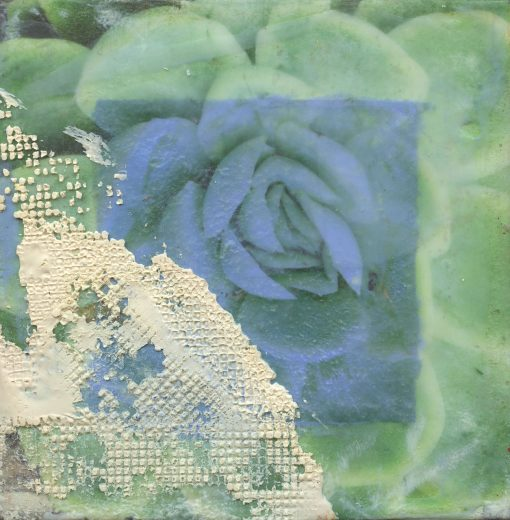 """""""Subdued Succulent"""" abstract encaustic painting by Maui artist Christine Waara"""